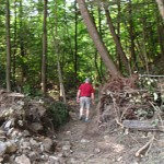 Irene - Footpath VT Route 9 1